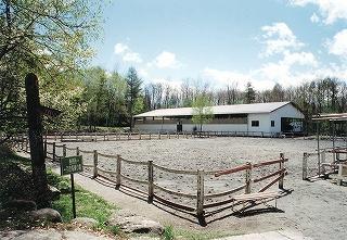 蓼科ポニー牧場
