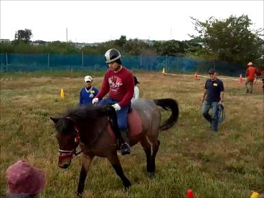RDAたま(馬とふれあう会)