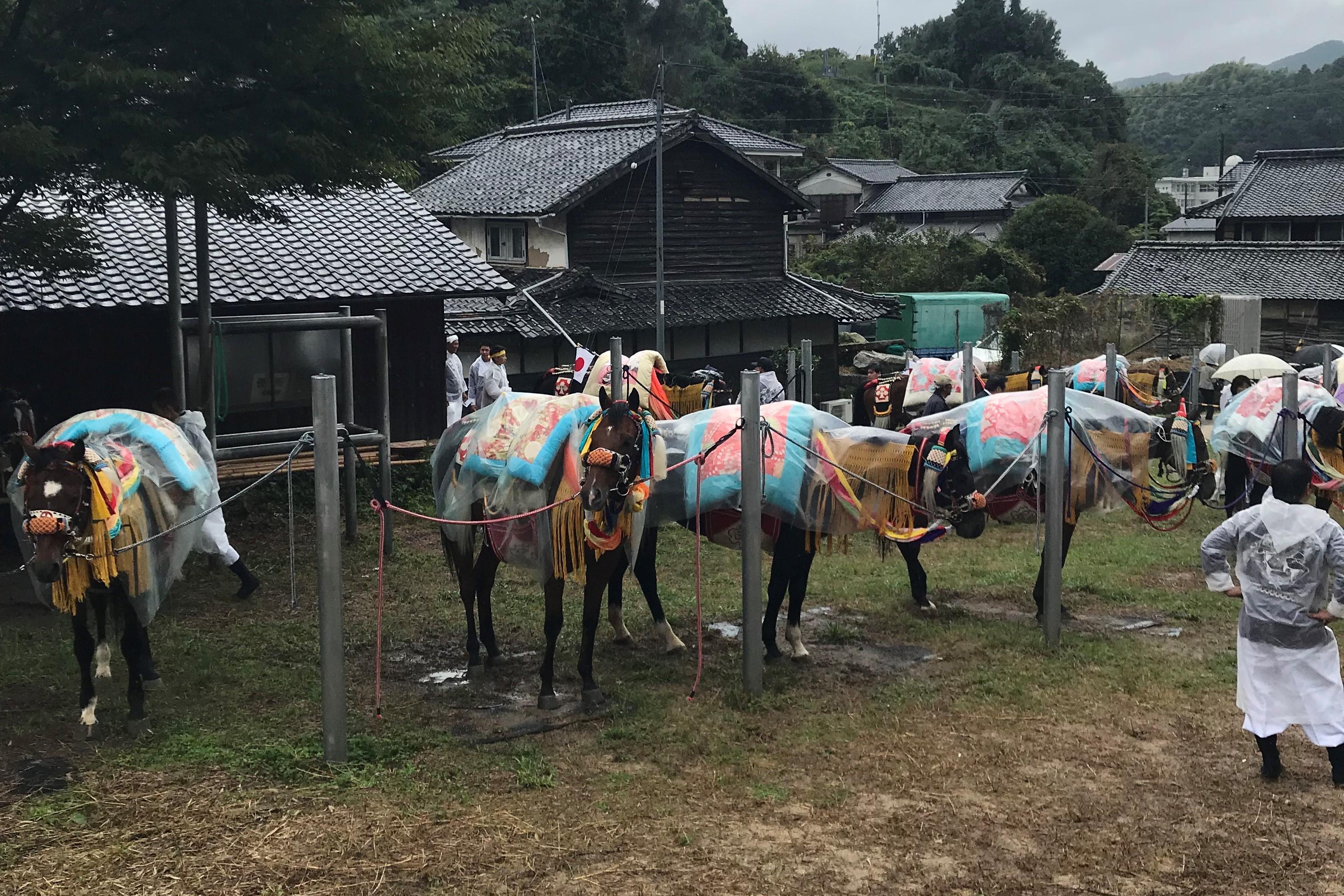 愛媛県今治市菊間町愛馬会
